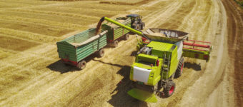 Harvester loading trailer with wheat. Aerial shot of farmers working on the wheat field with machinery.